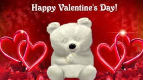 happy-valentines-day-bear